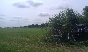 bike scenery fiets landschap