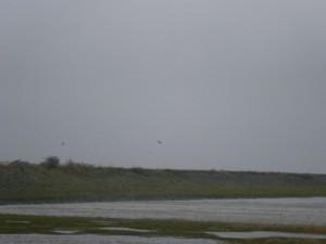Waddenzee, Wadden Sea, Netherlands
