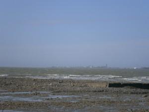 Coast 37