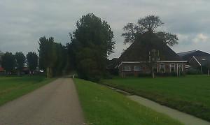 Buildings Farmhouse Friesland Nederland boerderij