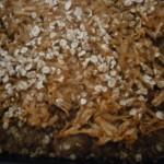 Food apple cake, appel havermout koek