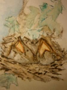 Paintings sparrows in nest mussen in nest waterverf schilderij