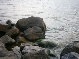 Coast IJsselmeer Friesland Nederland