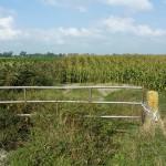 Fence hek