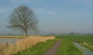 Netherlands Nederlands landschaplandschap