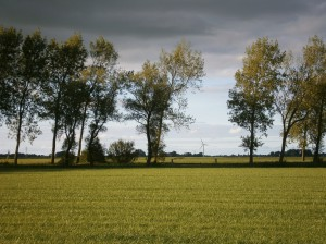 SNetherlands Nederlands landschap