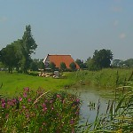 Farmhouse typical dutch scenery boerderij Friesland