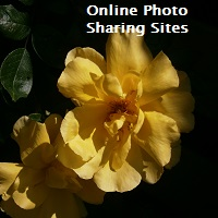 Online Photo Sharing Sites