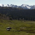 High Country Cow Camp Colorado